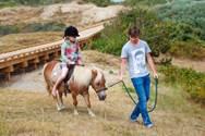 Balades à poney