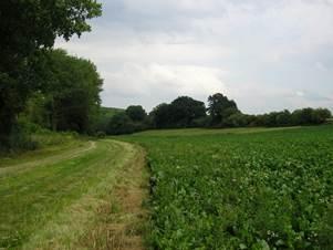Sentier du Tortillard