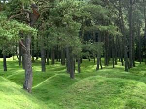 Vimy - Monuments et Patrimoine culturel - Parc commémoratif canadien de Vimy