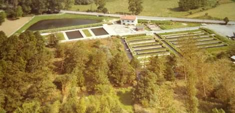Vue aérienne pisciculture