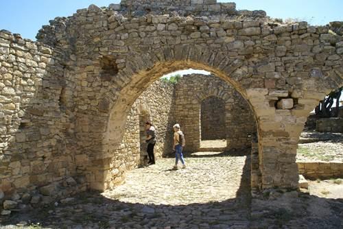Vignoble du Château de Gicon