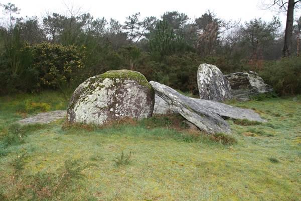 Le Clos Bocher - Monteneuf - Morbihan Bretagne sud CDT56 - P GOUEZIN