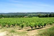 Cave des vignerons à St Laurent de Carnols