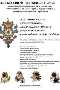 Concours des chiens tibétains de France