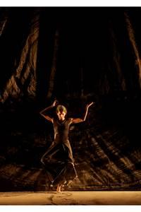 Danse / Théâtre / Arts visuels - aSH