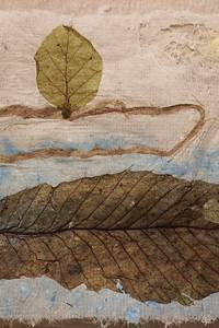 Création de papier et de dentelles végétales
