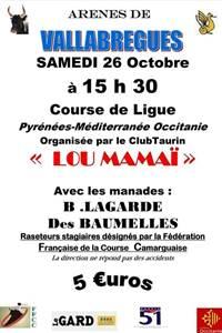 """Course Camarguaise """"Course de Ligue"""""""