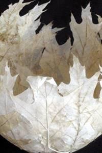 Biennale de papier