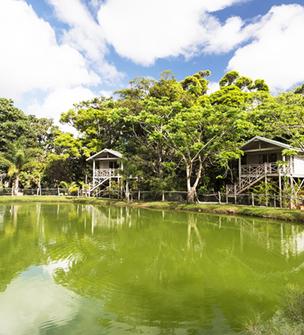 Farino Lodge, Lodge familial bâti sur une propriété agricole