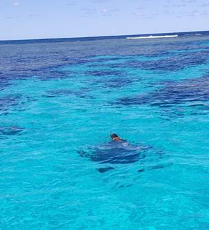 Nuuana - Discovery boat trip on Kutomo Beach + Brosse Islet