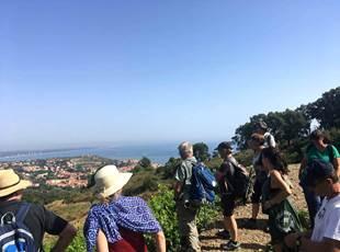 Discovering the domain of Pietri Géraud with VinOhrando