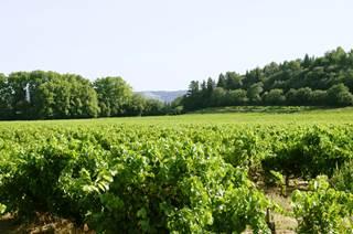 Les Côtes du Rhône Villages (AOP)