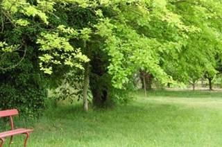 Jardins d'Aristée