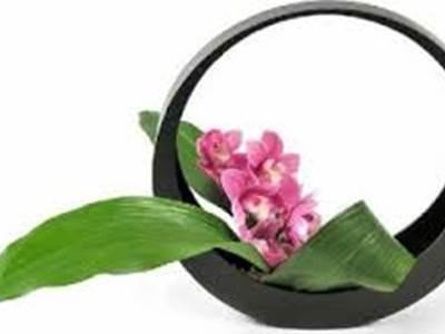 Initiation à l'Ikébana (art floral japonais)