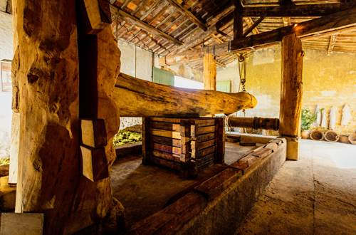 Mas des Tourelles - cave gallo-romaine reconstituée ©