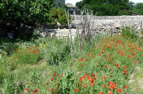 Les Jardins de la Condamine  ©