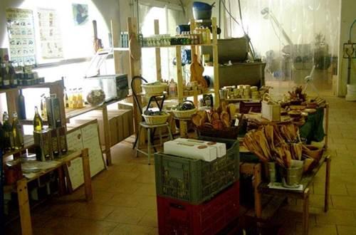 Maison de l'olivier ©