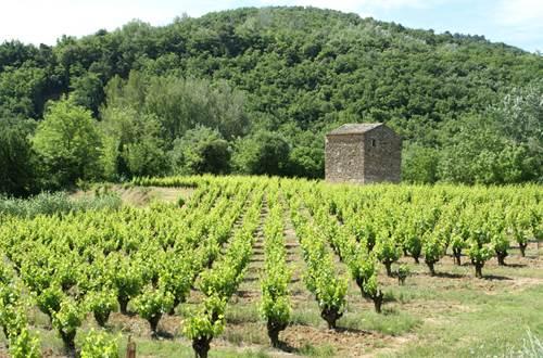 Côtes du Rhône ©