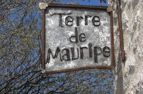 Terre de Mauripe ©