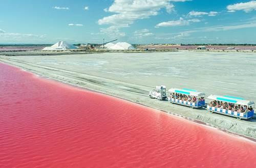 Salin d'Aigues Mortes - Visite en petit train ©