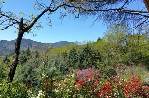 Vue sur la montagne au Camping les Sources ©