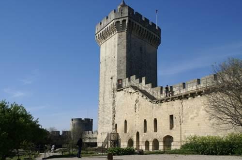 Château de Beaucaire ©