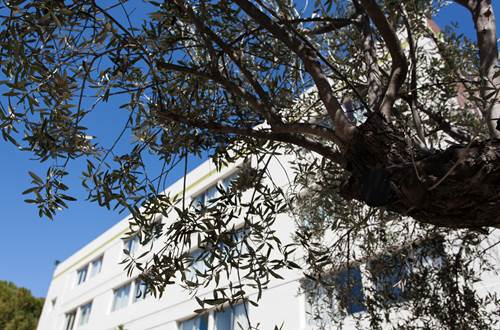 Hôtel B&B Nîmes Ville Active ©