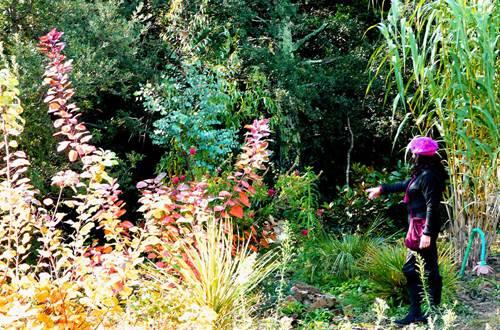 La Jardin Mas de la Frigoule ©