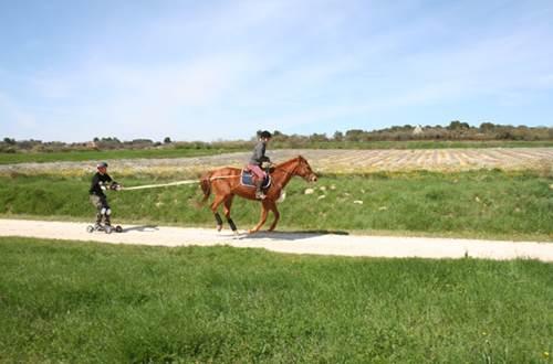 frany equitation uzès ©