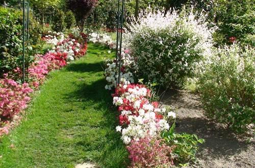 Parc Floral les Camellias Alès ©