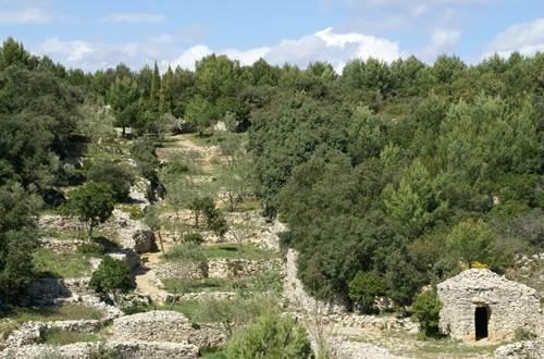 La Combe des Bourguignons- Escapades Nature Gard ©