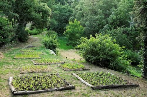 Les Jardins de Mazet ©