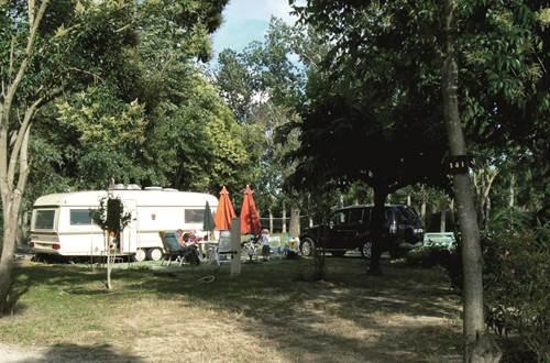 Camping Bellevue en Camargue ©