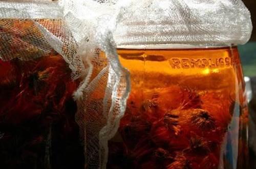 naturopathie-plante-infuse ©