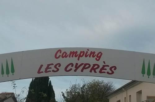 Les Cyprès ©