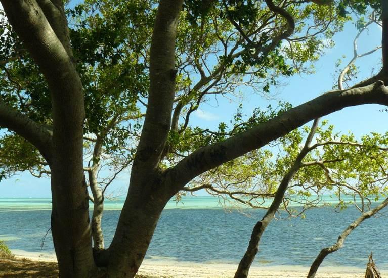 Poé et ses eaux turquoises