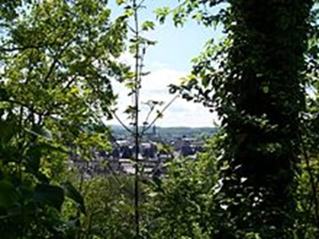 """""""point de vue"""" sur charleville du mont olympe"""