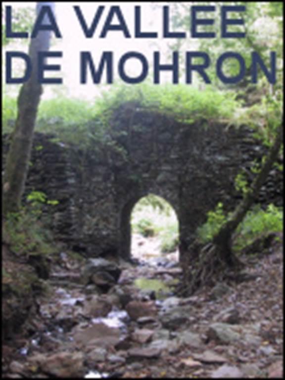 La vallée de Mohron
